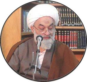 هادی نجفی